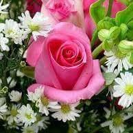 Las flores que me gustan